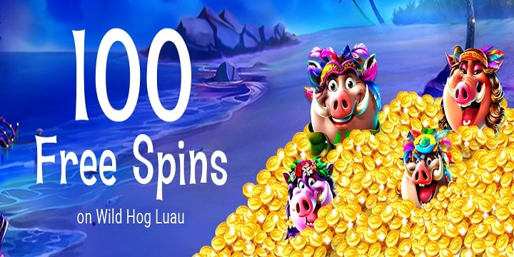 Free Spin Casino promotion