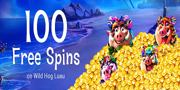 Free Spin Casino: 100FS on