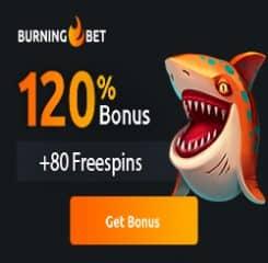Burningbet Casino Banner - 250x250