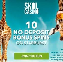 Skol Casino Banner - 250x250